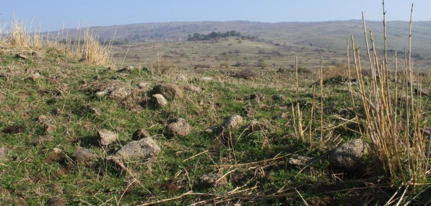 צילום מתוך עמדת טנק בחירבת סודה המשקיפה אל תל פאחר