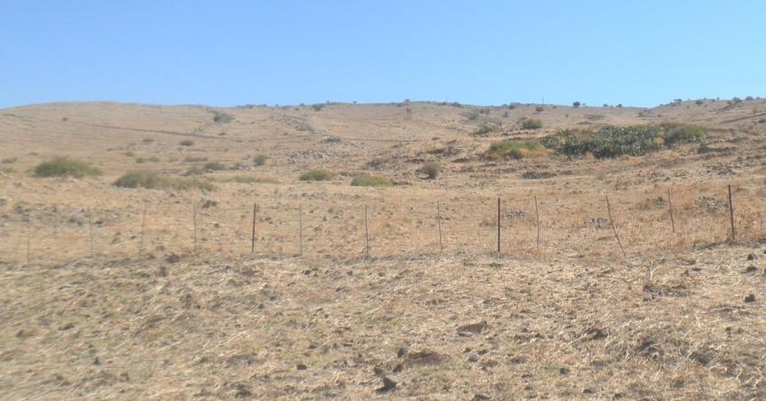 נקודת הפיצול. מכאן היה אמור גדוד 12 לטפס אל דרך הנפט כדי להגיע לתל פאחר ממזרח