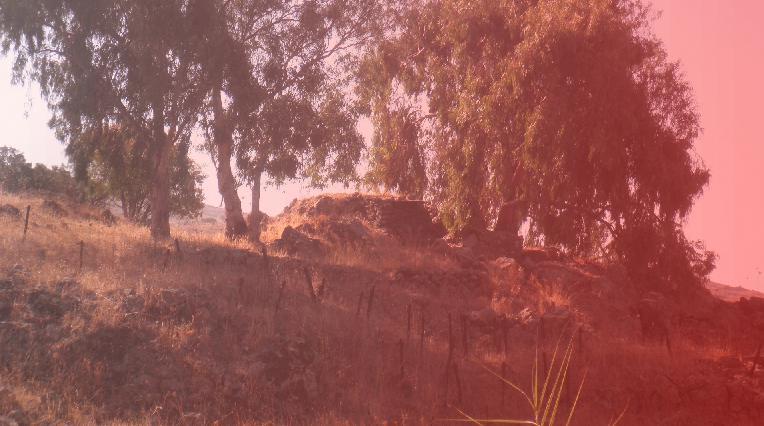 הגבעה באדום. כך ראה, או כך דימה, יצחק חמווי לראות את התל הדרומי במהלך הקרב