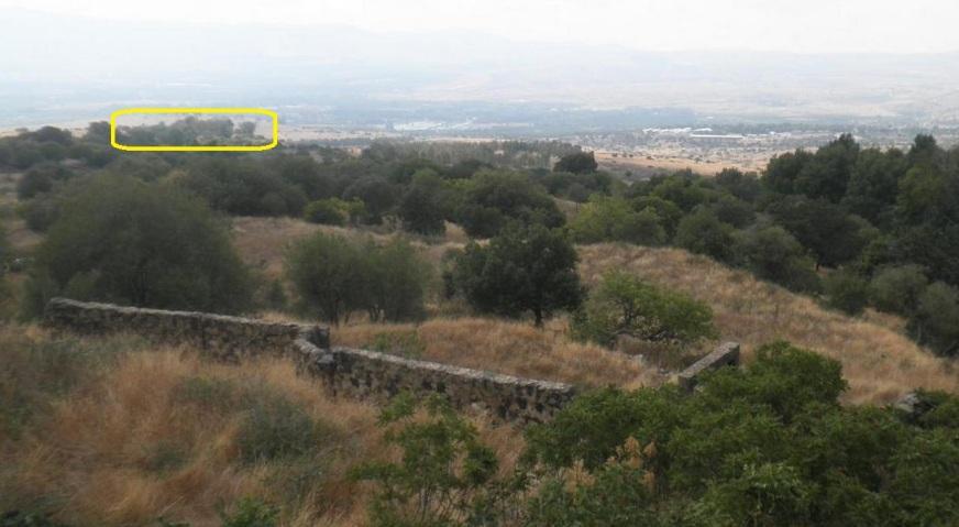 נוף מצוין למערב. תל פאחר (בצהוב) ובריכות קיבוץ דן
