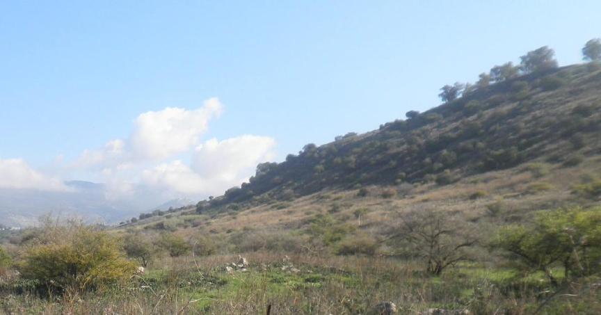 גבעה מאיימת