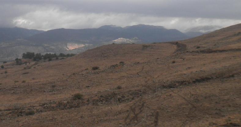 """צולם (לא בסיור הנוכחי) מחורבות א-דייסה צפונה. במרכז הצילום - """"גבעת הרתק"""" החולשת על תל פאחר (קבוצת העצים משמאל)"""