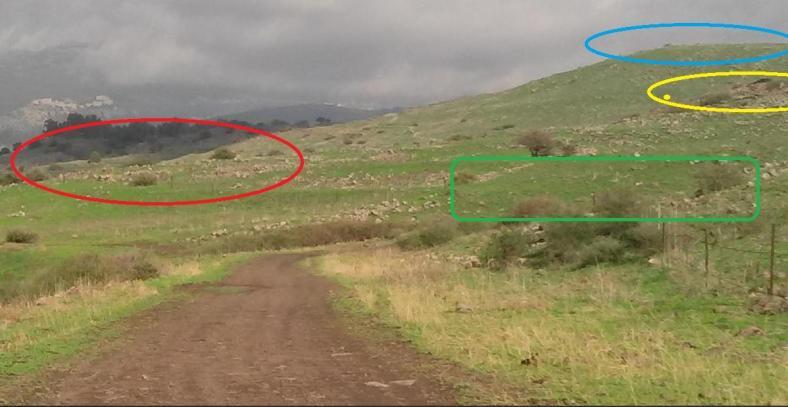 צהוב- ח'ירבת א-דייסה אדום- איזור מתאים לעמדות ירי. ירוק- איזור מתאים לטיפוס מזרחה (האיזור שאנו סיירנו מצוי על הגדה הדרומית של הוואדי הזה, כ-100 ממקום הצילום צפונה. כחול- שיא גבעת הרתק