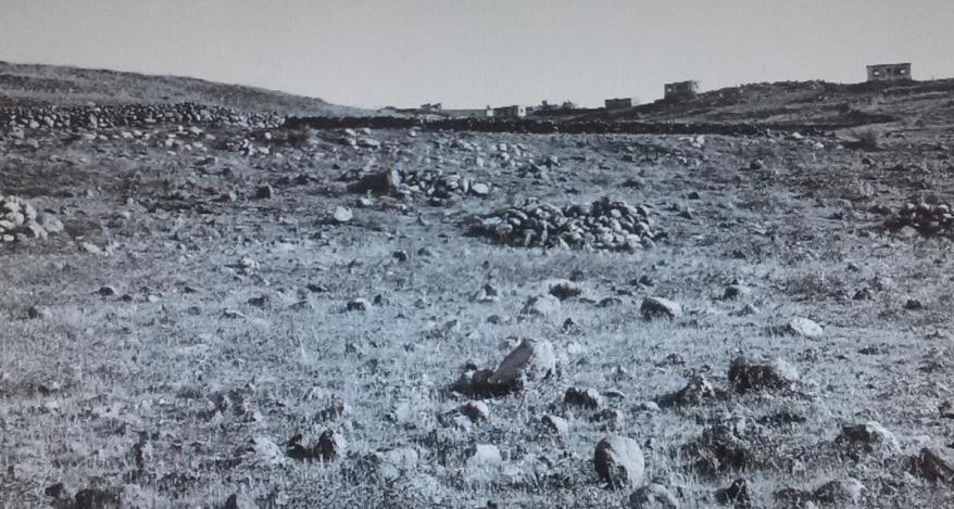 קלע, 1967