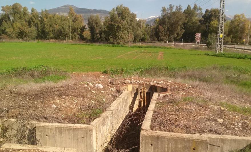 """התעלות בעמדות המזרחיות של משק דן. העצים ממול: החלקה האוסטרלית ממנה הגיעו הטנקים הסורים שנעצרו בתעלת הנ""""ט"""