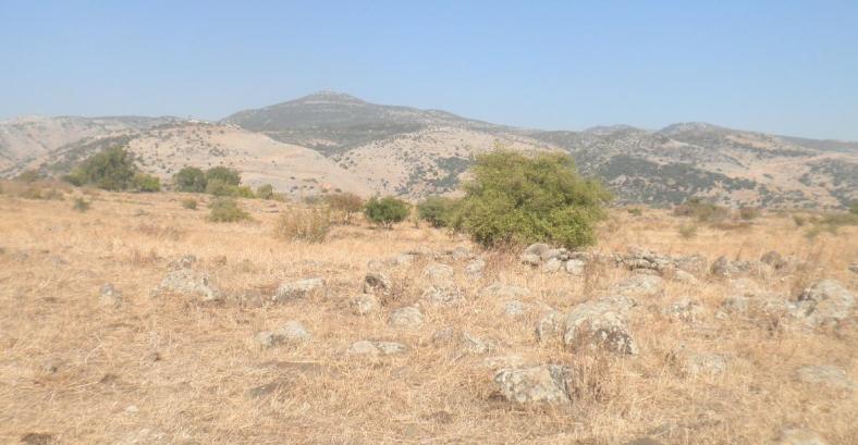 איזור הר דב, ואדי עסל זורם בינות להרים