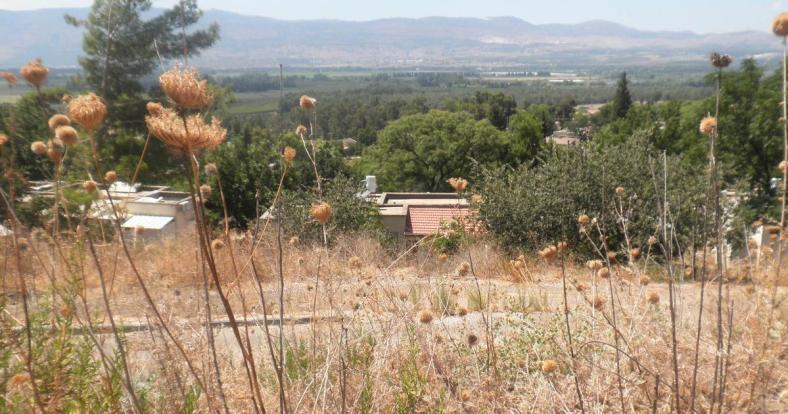 כפר סאלד