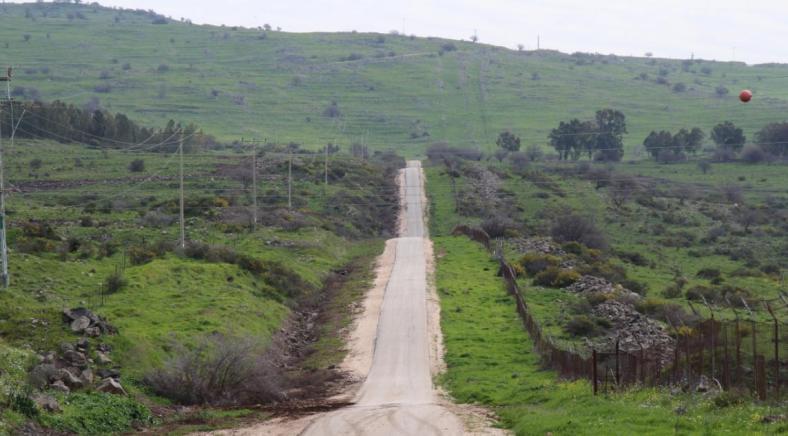 כביש הנפט
