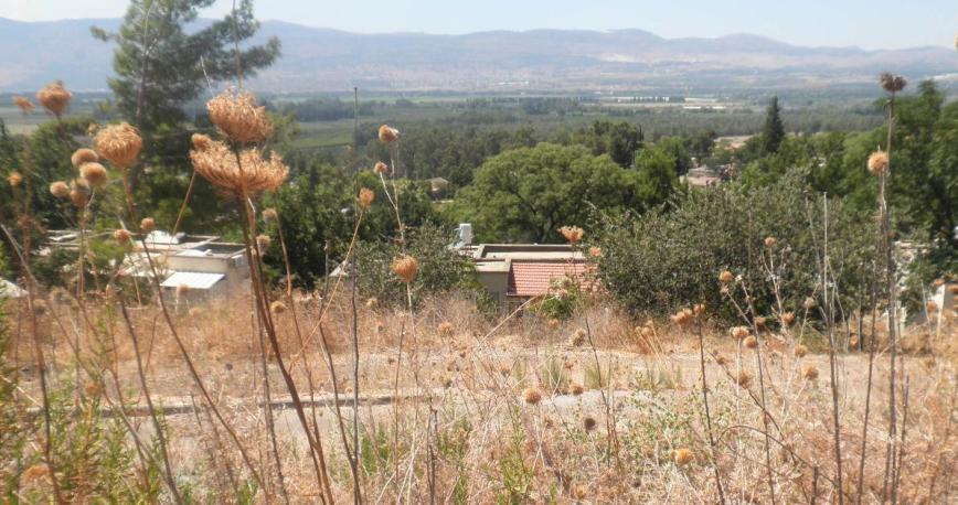 בתי כפר סאלד