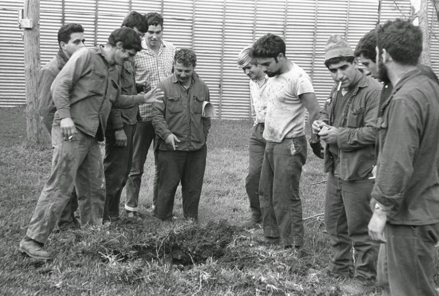 חברי קיבוץ תל קציר בוחנים בור מפצצה סורית במהלך הפגזות ה-7 באפריל 1967 [ארכיון התצלומים הלאומי]