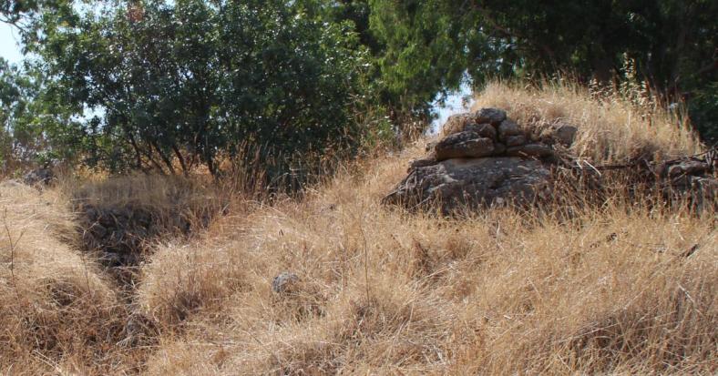 בונקר קטן בחלק המערבי התחתון של היעד הצפוני. צילום מצד מערב לכיוון מזרח