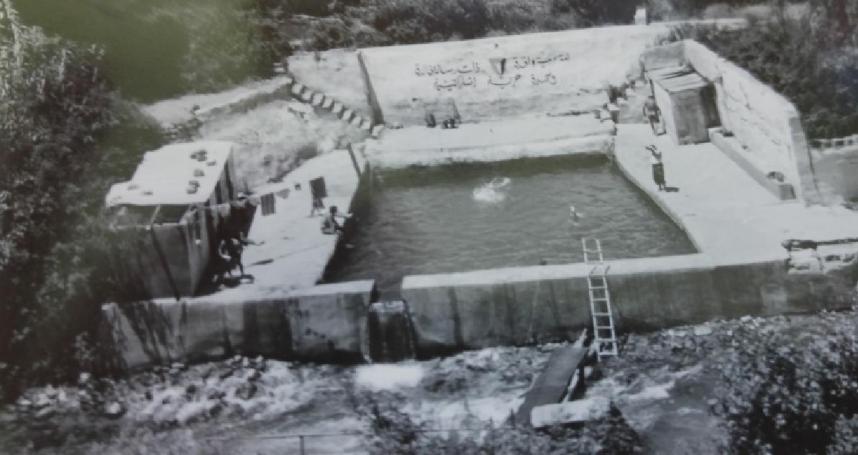 יוני 1967, הבריכה בבניאס שבה התרחצו החבר'ה