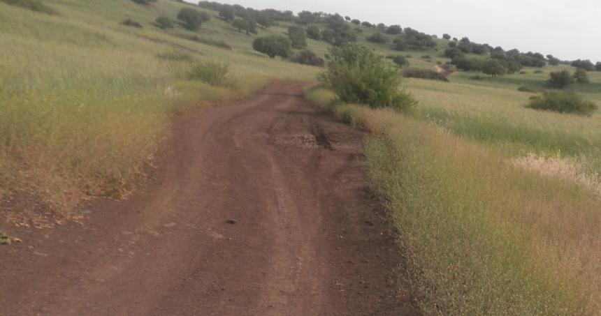 דרך הפטרולים הסורית באיזור נעמוש לכיוון דרום, עליה נעה חטיבה 8