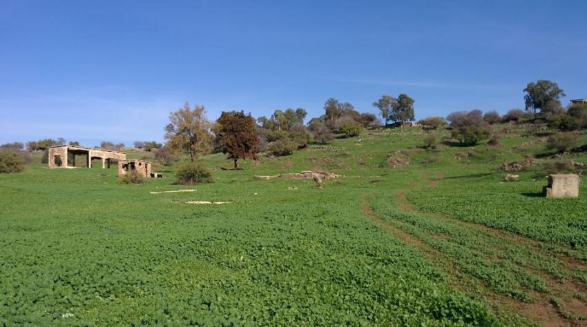 הכפר סיר א-דיב