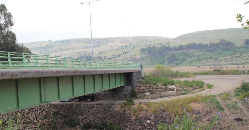 ג'לבינה [קבוצת העצים] מול גשר הפקק