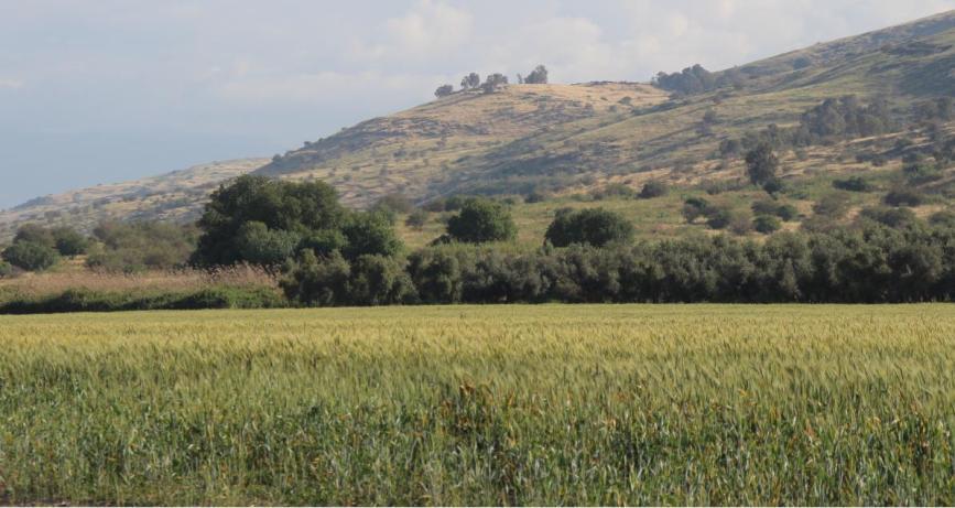 איזור א-תינה ודרבשיה מכיוון מערב