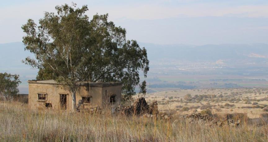 הבית של נועה תחת עץ האלה