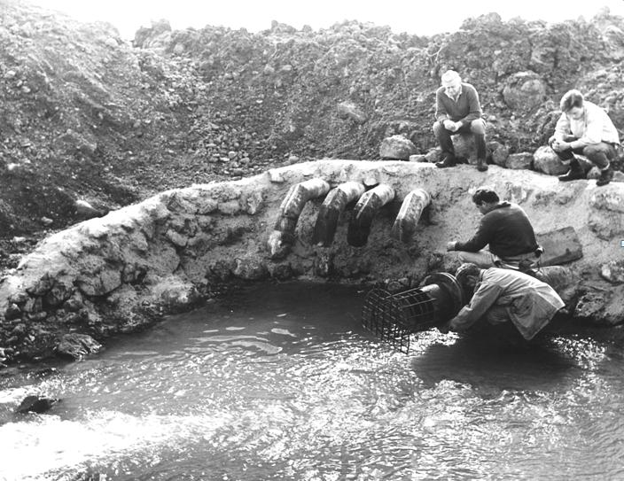 קיר אבנים בבטון
