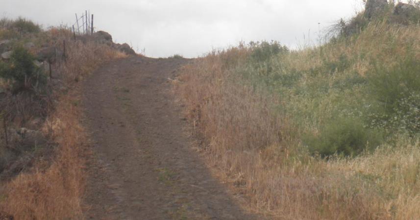 הדרך באיזור גבעת האם. שתי חטיבות עלו מכאן ב-9 ביוני 1967