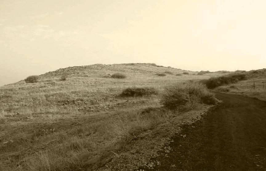 תל אבו חנזיר [גבעת האם], צילום מדרום לכיוון צפון
