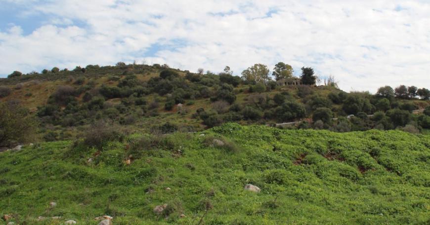 תל חמרה, צילום מאיזור קיבוץ שניר [בזמנו - רמת הבניאס]