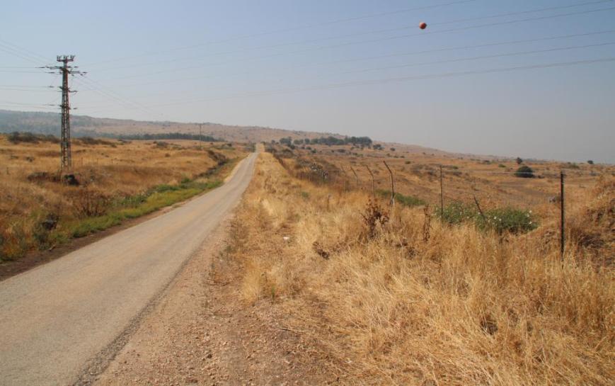 """כביש הנפט מצפון לדרום אל תל פאחר [קבוצת העצים מימין לכביש]. מכאן הגיע זחל""""ם המחלקה המיוחדת"""