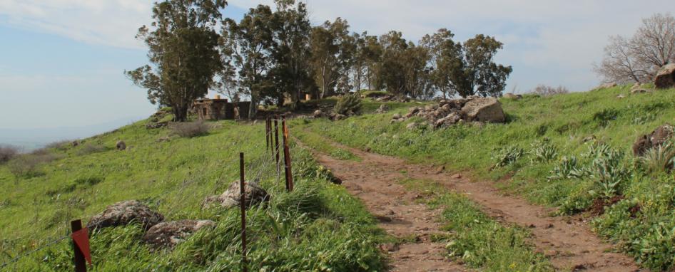 תל עזזיאת, השביל הראשי המוביל לכניסה מצפון