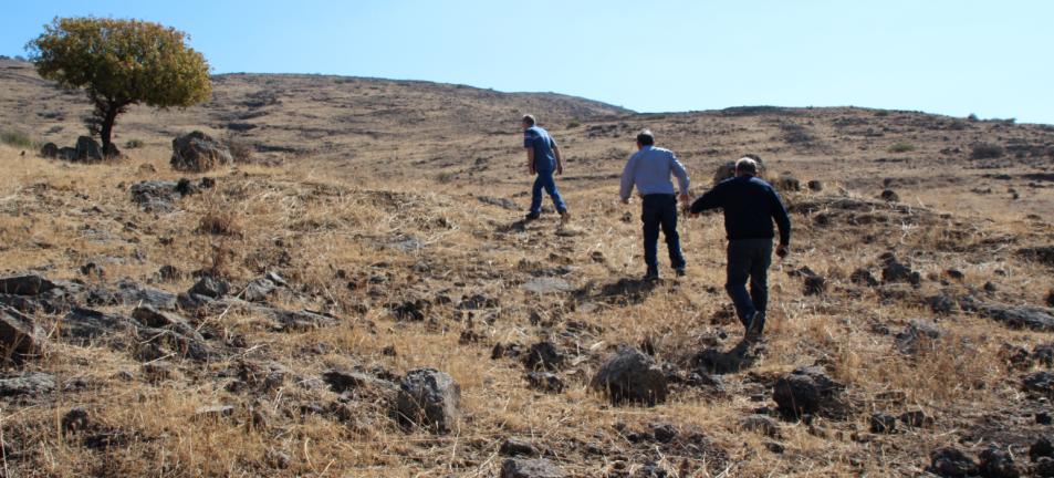 עולים לכיוון הכפר א-דייסה. מימין: הוברמן, ברוש וביזר
