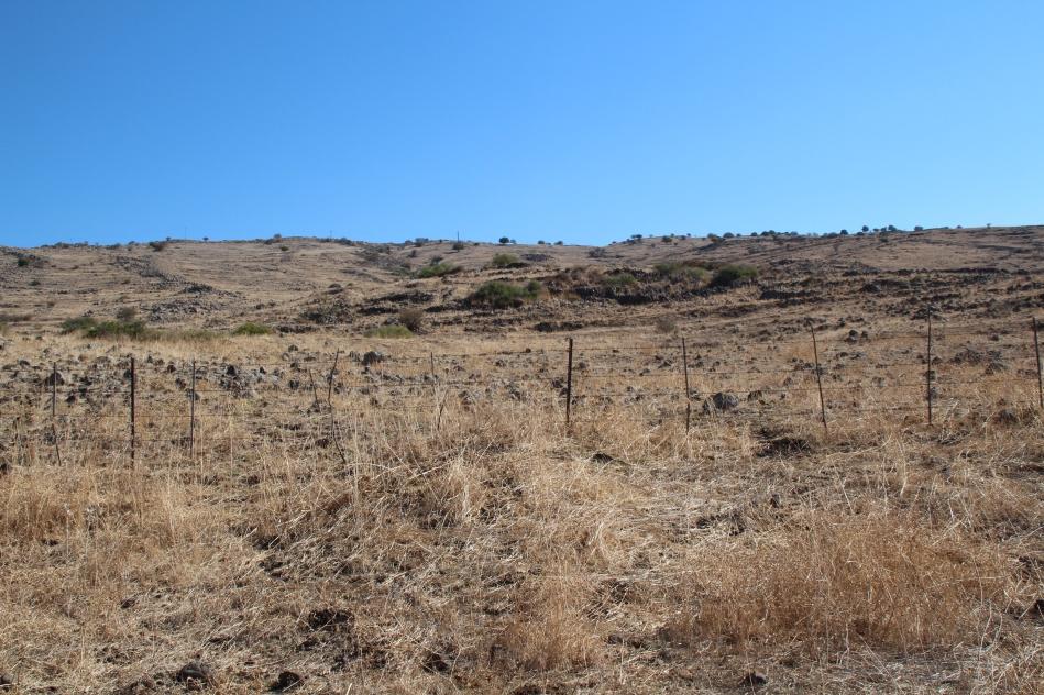 צילום מדרך ההטיה בכיוון כללי הכפר עין א-דייסה [לצפייה בצילום מוגדל - לחצו]