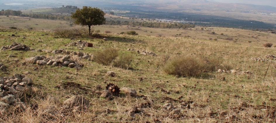 הגלגל המניע של טנק החוד של פלוגת זיווה מוטל לצד הדרך האוגפת, כ-10 מ' ממערב לו