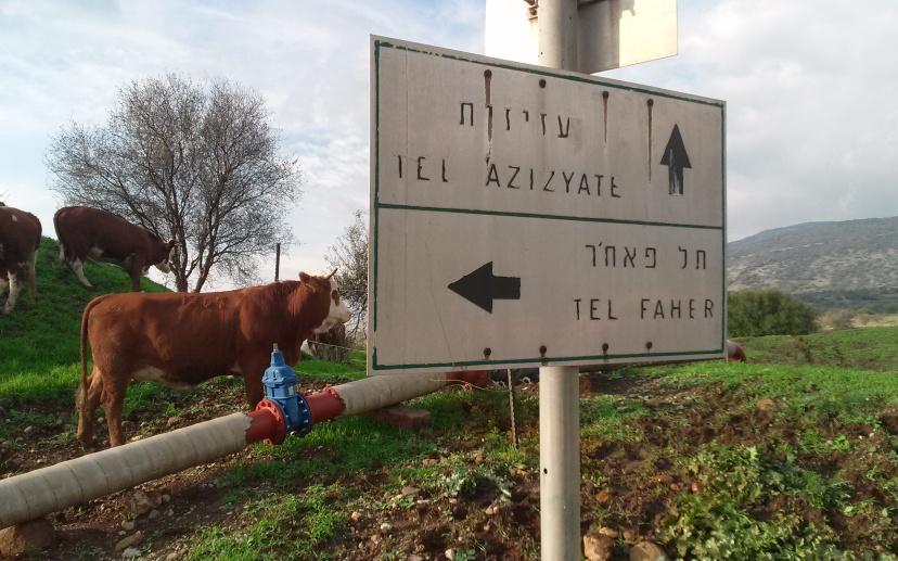 המקום היחיד שבו תל פאחר ותל עזזיאת נפגשים: שלט ישן בצומת דרך הנפט עם דרך המוצבים הסורית